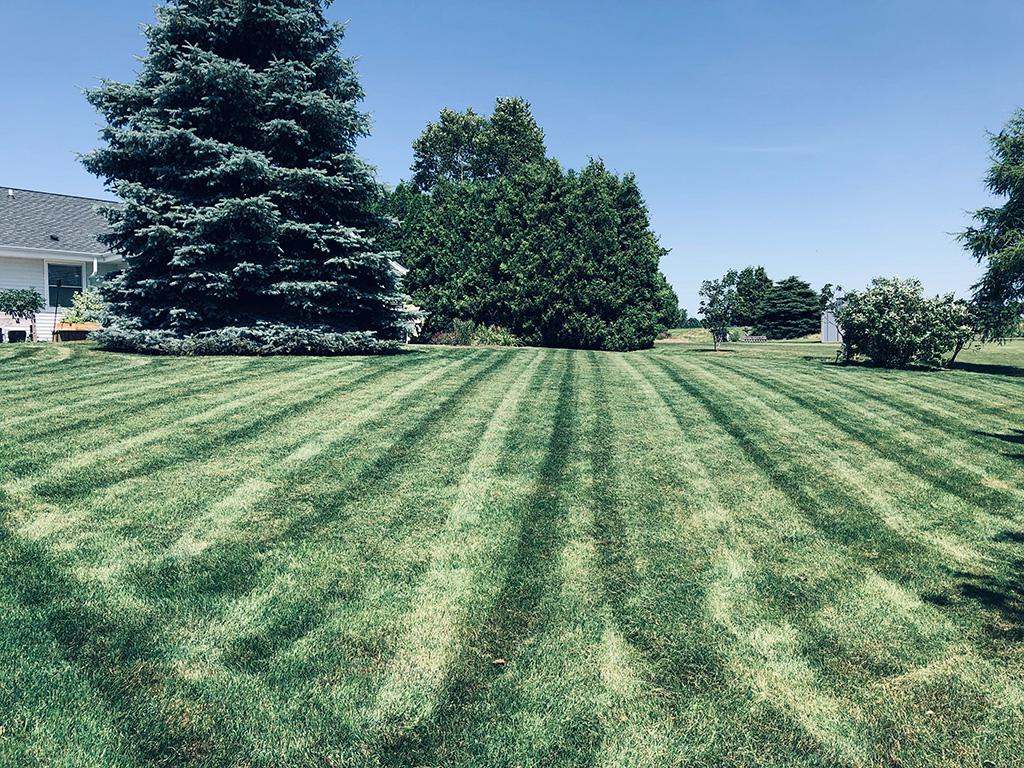 Lawn Stripes!